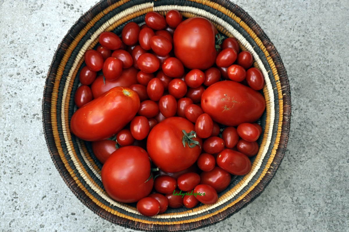Tomato Passata Please Pass The Recipe