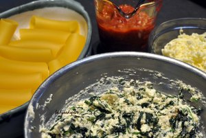 Spinach Ricotta Canneloni elements