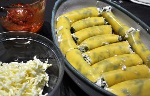 Spinach Ricotta Canneloni filling