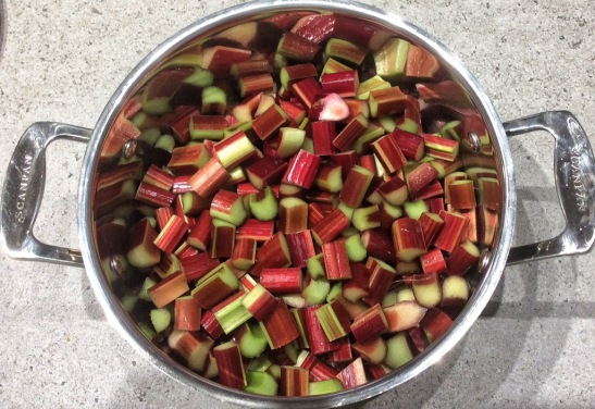 Ready to cook rhubarb