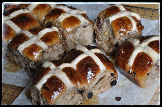hot cross bun development